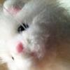 https://static.tvtropes.org/pmwiki/pub/images/tabby_2.png