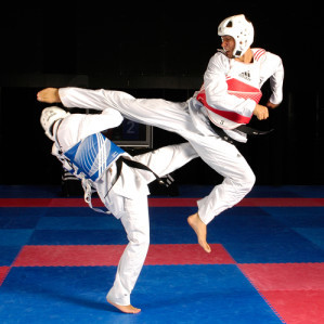 taekwondo useful notes tv tropes