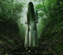 https://static.tvtropes.org/pmwiki/pub/images/the-ring-sadako-is-a-stringy-haired-ghost-girl.jpg