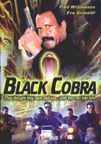 https://static.tvtropes.org/pmwiki/pub/images/the_black_cobra.jpg