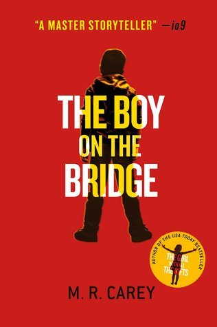 https://static.tvtropes.org/pmwiki/pub/images/the_boy_on_the_bridge.jpg