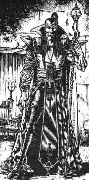 https://static.tvtropes.org/pmwiki/pub/images/the_dark_elf_sorcerer.jpg