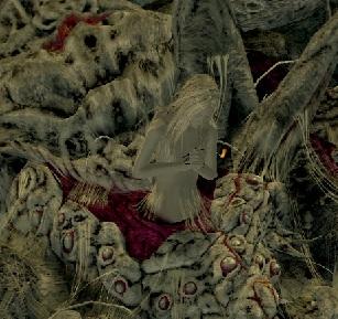 Dark Souls Covenants / Characters - TV Tropes