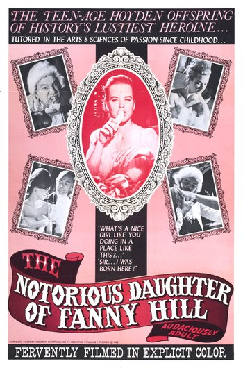 https://static.tvtropes.org/pmwiki/pub/images/the_notorious_daughter_of_fanny_hill.jpg