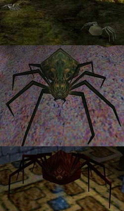 https://static.tvtropes.org/pmwiki/pub/images/thief_spiders_6461.png