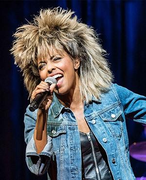 Tina Turner (Music) - TV Tropes