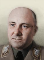 https://static.tvtropes.org/pmwiki/pub/images/tno_baldmann.png