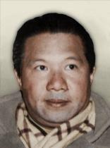 https://static.tvtropes.org/pmwiki/pub/images/tno_bao_dai.png