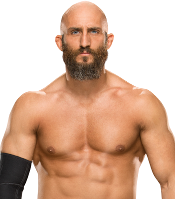 http://static.tvtropes.org/pmwiki/pub/images/tommaso_ciampa.png