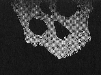 https://static.tvtropes.org/pmwiki/pub/images/true_assassin_sf.png