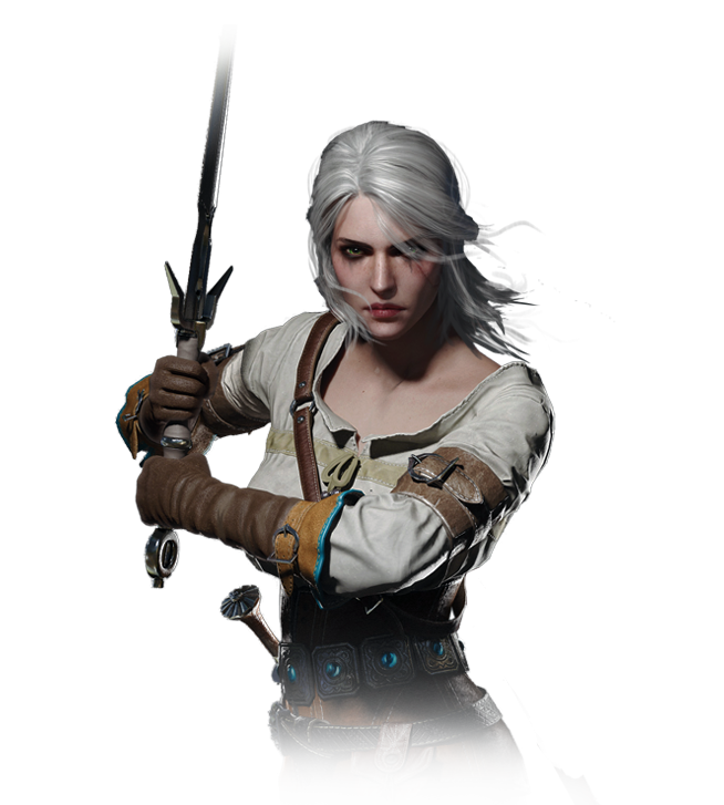 http://static.tvtropes.org/pmwiki/pub/images/tw3_journal_ciri13.png