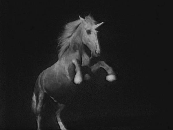http://static.tvtropes.org/pmwiki/pub/images/unicorn_8184.jpg