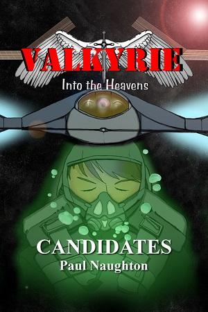 https://static.tvtropes.org/pmwiki/pub/images/valkyrie-candidates_7170.jpg
