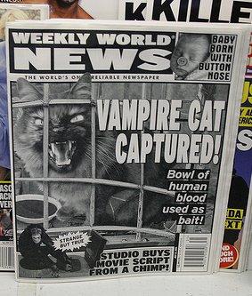 http://static.tvtropes.org/pmwiki/pub/images/vampirecat1.jpg