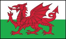 https://static.tvtropes.org/pmwiki/pub/images/wales_flag_7907.png