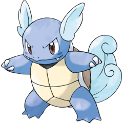 https://static.tvtropes.org/pmwiki/pub/images/wartortle008.png