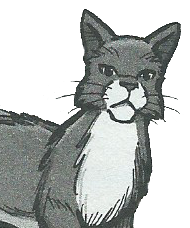 https://static.tvtropes.org/pmwiki/pub/images/waspwhisker_manga.png