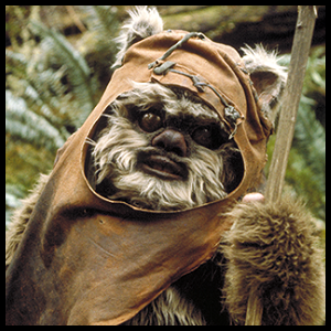 https://static.tvtropes.org/pmwiki/pub/images/wicket_warrick_sw.png