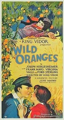 https://static.tvtropes.org/pmwiki/pub/images/wild_oranges_film_poster.jpg