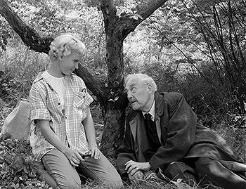 http://static.tvtropes.org/pmwiki/pub/images/wild_strawberries.jpg