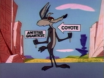 https://static.tvtropes.org/pmwiki/pub/images/wile_e_coyote_in_lickety_splat.jpg