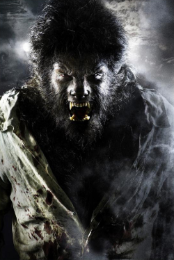 http://static.tvtropes.org/pmwiki/pub/images/wolfman-2009-250px.png