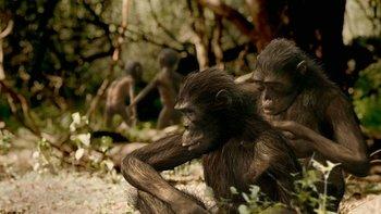 https://static.tvtropes.org/pmwiki/pub/images/wwb_australopithecus.jpg