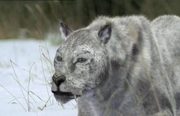 https://static.tvtropes.org/pmwiki/pub/images/wwb_cave_lion.jpg