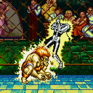 https://static.tvtropes.org/pmwiki/pub/images/x-ray-sparks_street-fighter-2_03_2061.png