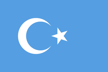 https://static.tvtropes.org/pmwiki/pub/images/xinjiang_flag.png